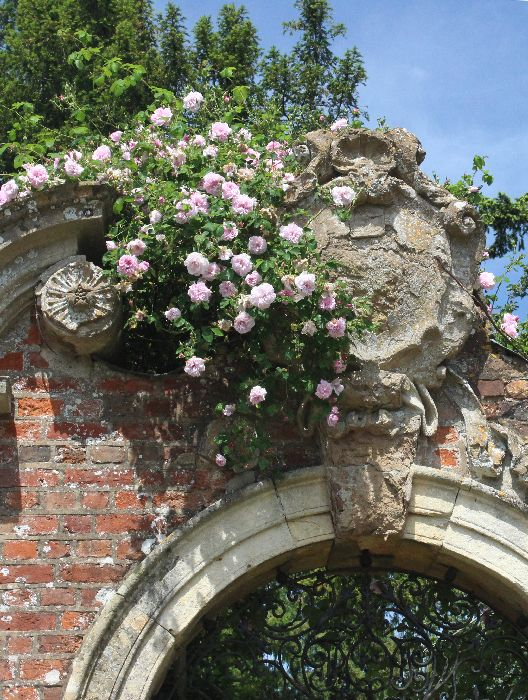 Roses above an arched gateway.