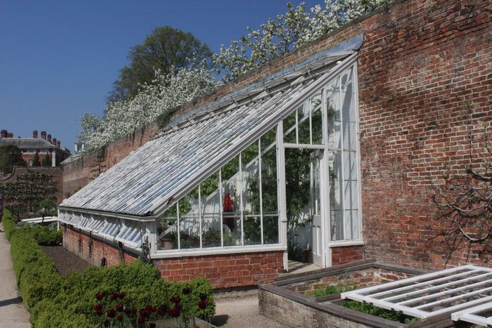 Glass house against the south-facing wall, with cold frames in the foreground.